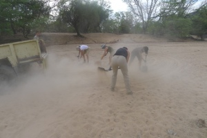 Volunteers doing sand runs