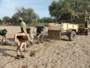 Volunteers collecting sand