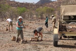 Volunteers collecting rocks