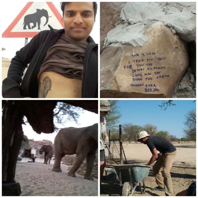 ehra-beejal-namibia-elephan