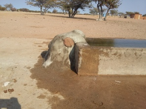 Fixing walls+tank+pipes+trough+dam at Omungambu (8)